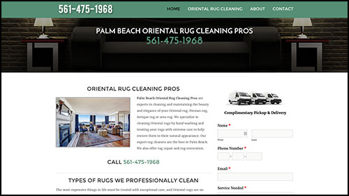 palm beach oriental rug cleaning pros